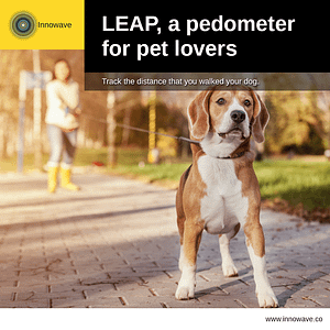 Pet Care: LEAP, a pedometer for pet lovers