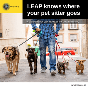 Pet Care: LEAP knows where your pet sitter goes